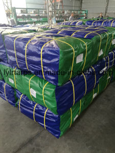 Heavy Duty Plastic Tarpaulin Sheet, Poly Tarp Cover pictures & photos
