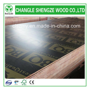 Premium Quality 17.5mm with Logo Marine/Shuttering/Formwork/Concrete Plywood pictures & photos