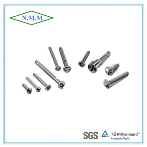 Screw/Bolt/Self-Tapping Screw/Assemblies Screws Fastener pictures & photos