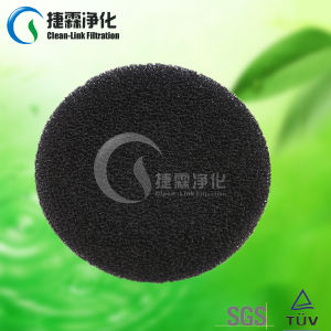 Supply Hight Quality Activated Carbon Filter Air Purifier pictures & photos