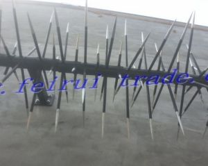 Superior Quality High Security Anti-Climb Wall Spikes pictures & photos