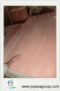 9mm 12mm 4X8 Bintangor Fancy Veneer Plywood pictures & photos