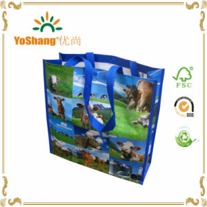 Promotional Shopping High Quality Custom Recycled PP Woven Bag pictures & photos