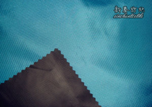 Polyester Rib/Stop 2linings with Foam Coating pictures & photos