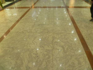 Andronmeda White Marble Tile/ Slab for Inne Flooring pictures & photos