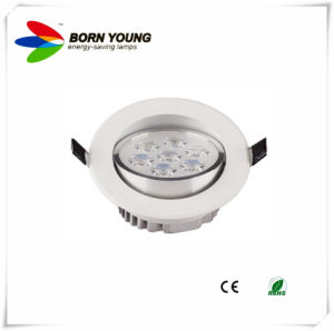 3W-18W High Brightness LED Downlight, LED Ceiling Light, LED Lighting pictures & photos