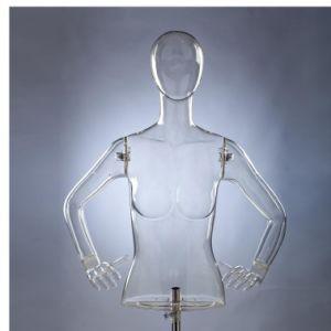 High Quality Female Half-Body Mannequin (PC-UN-019- 4)