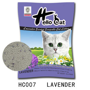 2016 Hello Cat Bentonite Charcoal Cat Litter Disposal High Quality and Clumping pictures & photos