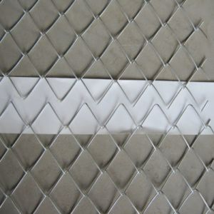 Anping Factory Direct Supply Galvanized Chain Link Fence pictures & photos