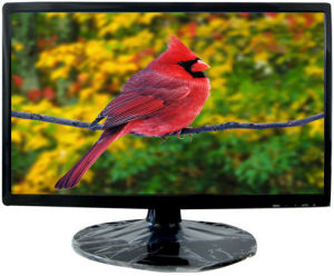 "20"" LCD TV (Wide Screen) (RX-201)"