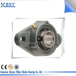 Two Bolts Flange Pillow Block Bearing UCP208 with P208 Cast Iron Housing pictures & photos