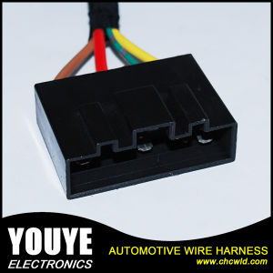 OEM Electrical Wire Harness pictures & photos