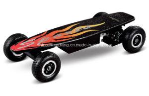 CE Approved 800W Electric Skateboards (DM36V-800A)