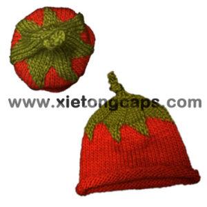 Cute Handmade Crochet Hats (JRAD029) pictures & photos