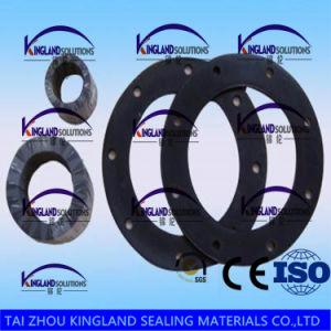 (KLG482) FKM /Viton Fluorocarbon Rubber Seal Gasket pictures & photos