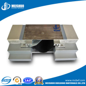 Expansion Joint Systems in Buildings Expansion Joint Systems (MSDG) pictures & photos