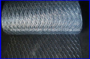 USA Standard Stucco Hexagonal Wire Netting pictures & photos