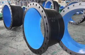 Di Double Flanged Reducer pictures & photos