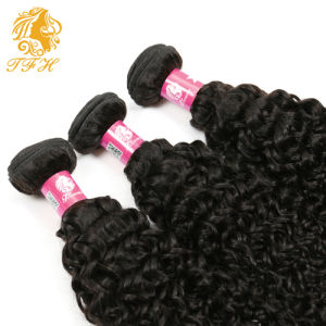 8A Grade 4 Bundles Rosa Hair Products Malaysian Kinky Curly Virgin Hair Malaysian Curly Hair, Malaysian Virgin Human Hair Weaves pictures & photos