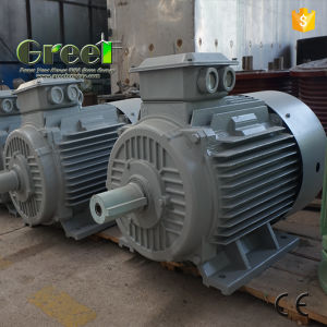 Permanent Magnet Generator 100kw 250rpm 48-690V Alternator with BV pictures & photos