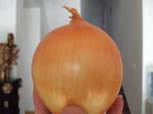 Fresh Yellow Onion From China for Asian Market pictures & photos