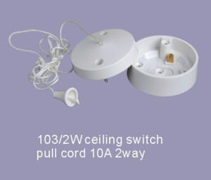 10A 2 Way Pull Cord Ceiling Switch Ceiling Rose pictures & photos