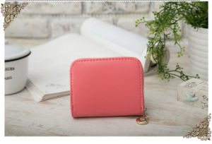 2016 Newest Zip Genuine Leather Women Wallet, Zip Clutch Wallet pictures & photos