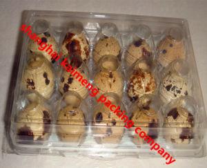 3X5 15units Three Faces Plastic Quail Egg Setting Trays pictures & photos