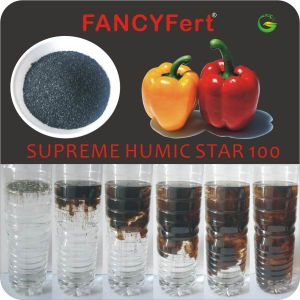 85-100% Soluble Potassium Humate pictures & photos
