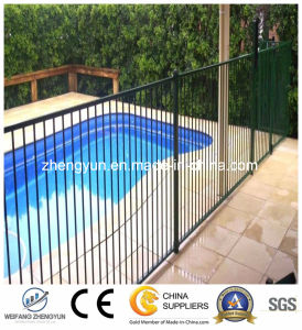 Hot Sale Metal Fence/ Temporary Swimming Pool Fence pictures & photos