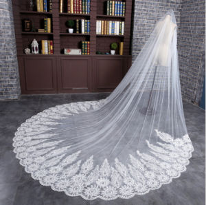 2016 Hot Sale Long Tulle Bridal Veil with Lace Applique Pattern Edge pictures & photos