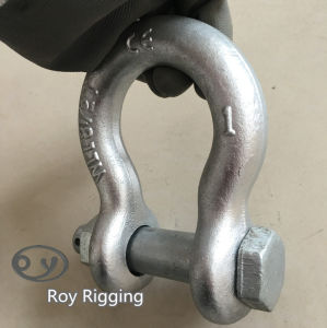 Bolt Type Anchor Shackle pictures & photos
