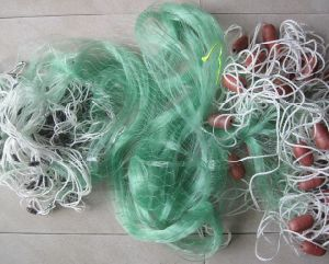 Completed Monofilament Fishing Net with Double Knots pictures & photos