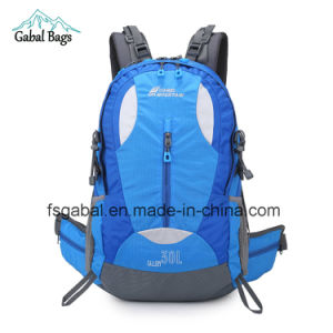 Camel Moutain 35L Rucksack/Backpack Camping Hiking Travel School Bag pictures & photos