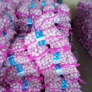Chinese Fresh White Garlic in 10kg Mesh Bag pictures & photos