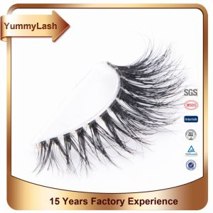 Custom Packaging Wholesale Moodstruck Mascara Lashes 3D Eyelash Extensions pictures & photos