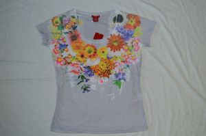 Ladie′s Crew T-Shirt with Transfer Printed