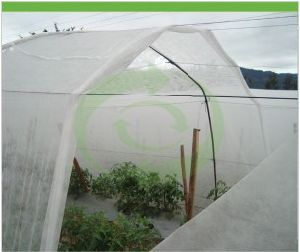 Polypropylene Agriculture Non Woven Fabric with UV pictures & photos