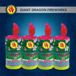 Twitter Glitter Combination Fireworks Gd7392 pictures & photos