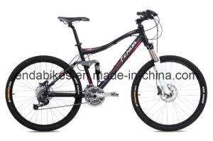Mountain Bike (TIB90)