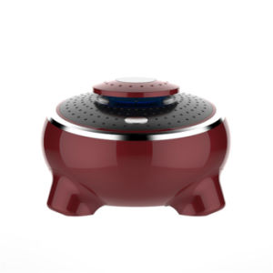 Brown DC12V HEPA Filter Car Air Purifier with Compass pictures & photos