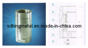 Stainless Steel CF8 800wog 1PC-Spring Vertical Check Valves pictures & photos