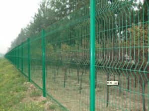 High Quality Wire Mesh Fence