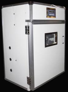 Egg Incubator Hatching Machine (RD-352)