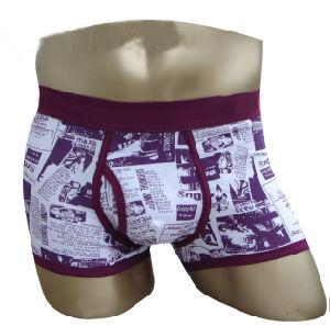 Men′s Fashion Underpants (#-458) (20110329)