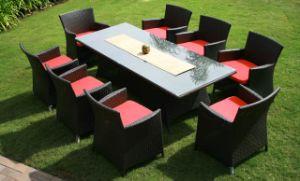 Garden Rattan Furnitures (MD-020)