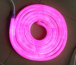 CE EMC LVD RoHS Two Years Warranty, LED Neon Flex Rope Light / LED Neon Sign (Pink, 220V, 12V) pictures & photos