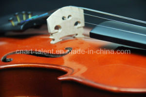 Spruce Solidwood Popular Violin 1/8-4/4 (N-V02) pictures & photos