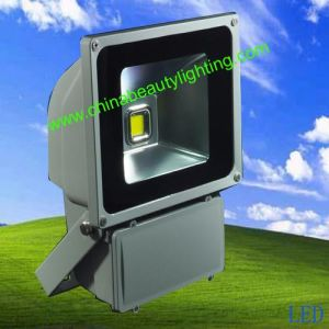 LED Flood Light Solar Light 100W Outdoor Light pictures & photos