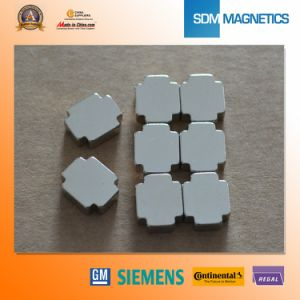 Special Shape Customized Neodymium Permanent Magnet pictures & photos